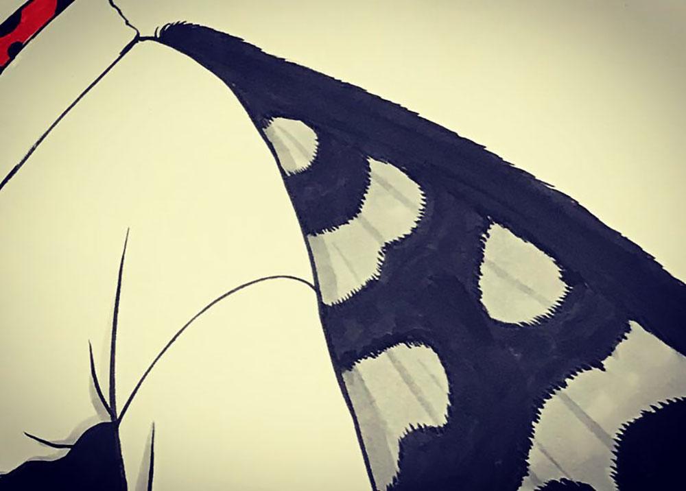 新種の蛾の妖怪 GA2