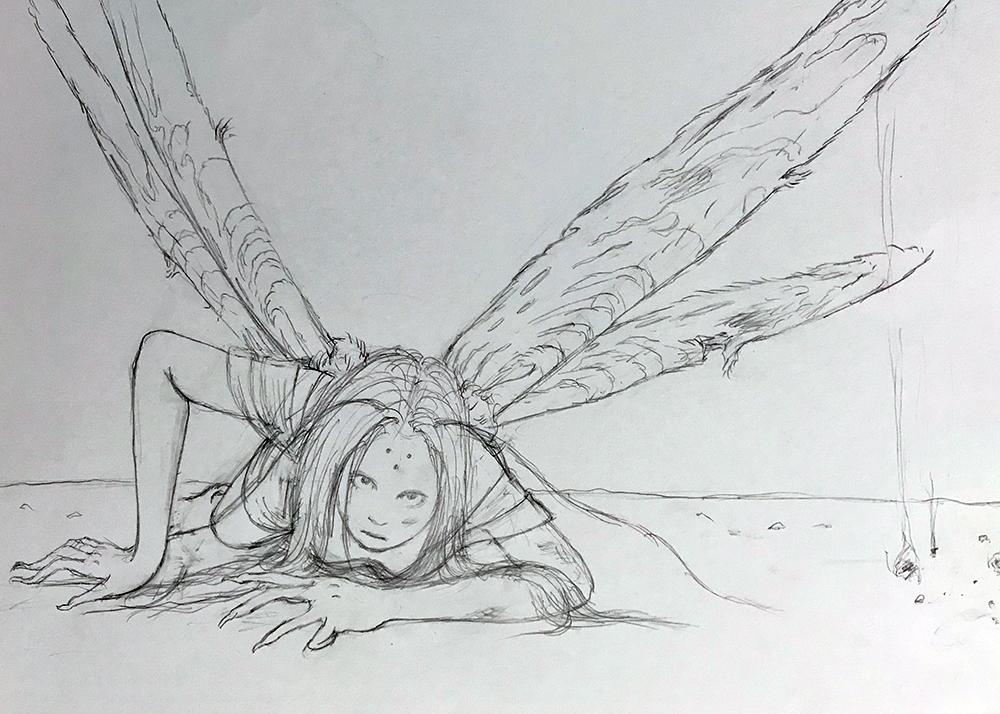 夜の蛾 MOTH
