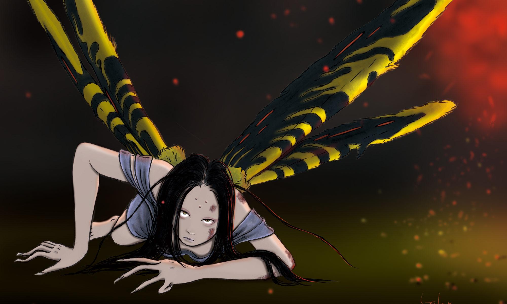 夜の蛾(color) MOTH