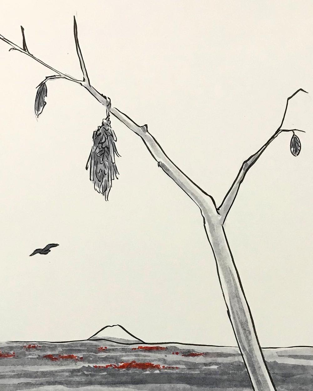 蓑虫。みのむし MINOMUSHI