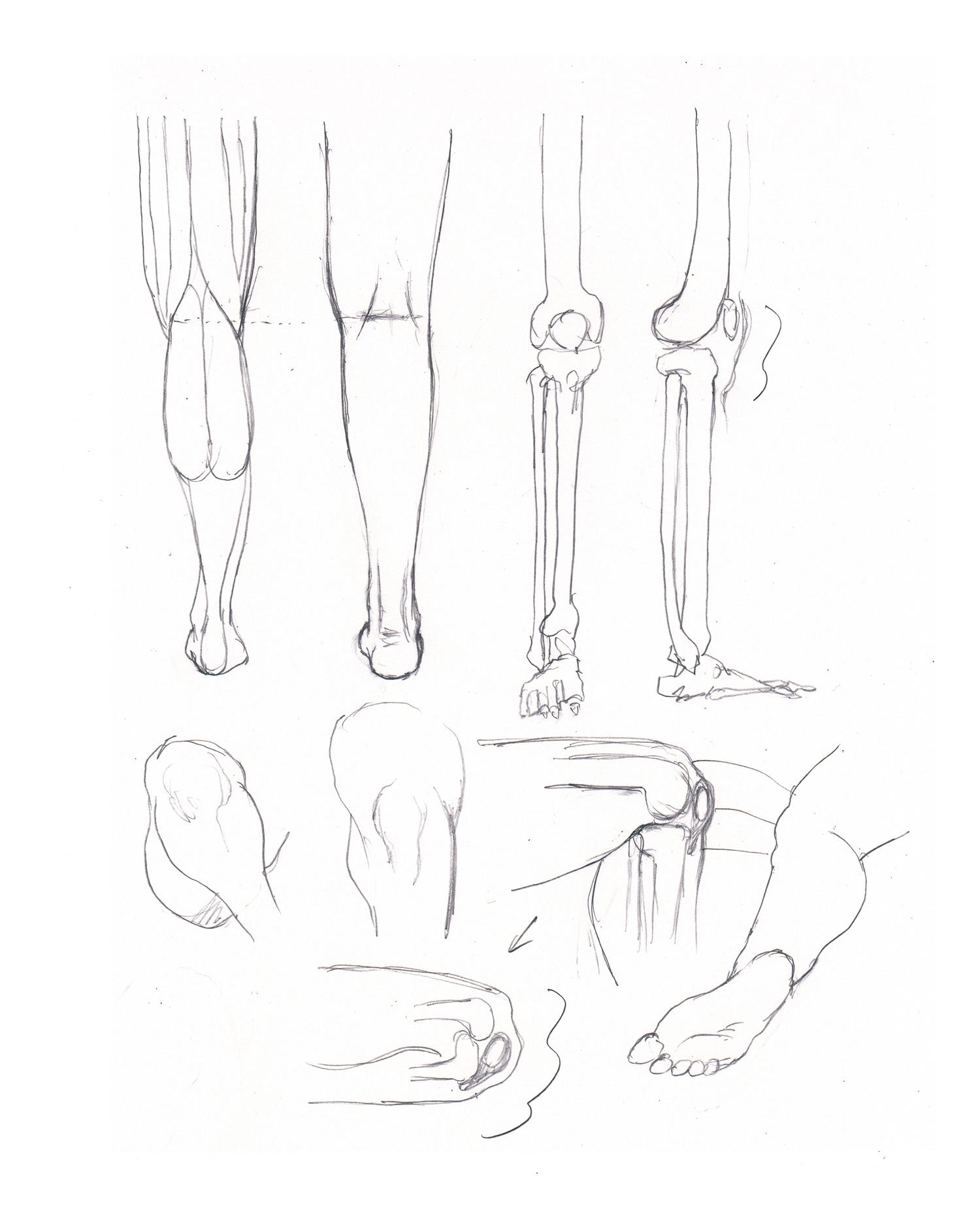 ひざを描く練習 HIZA