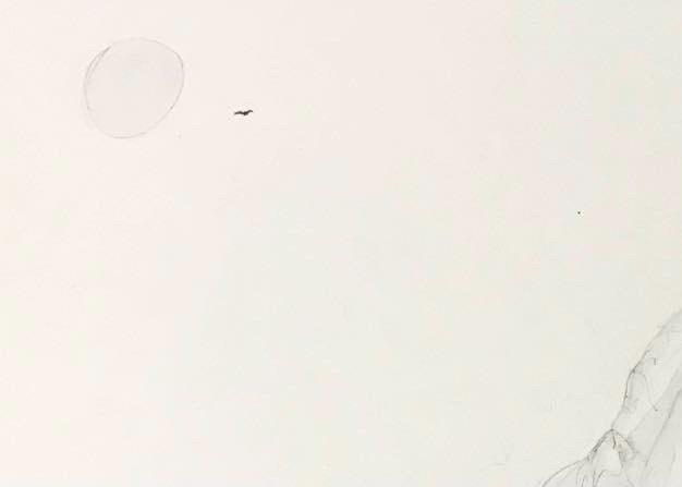 カラスと猫のいる風景 KARASU