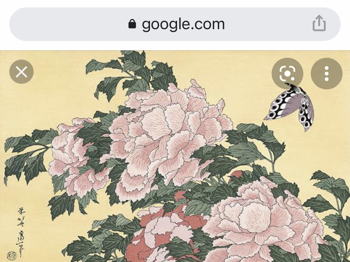 シン・牡丹に蝶 BOTAN AND CHO